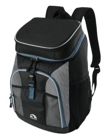 Favorite Things Friday Vol. 9 Igloo Backpack Cooler