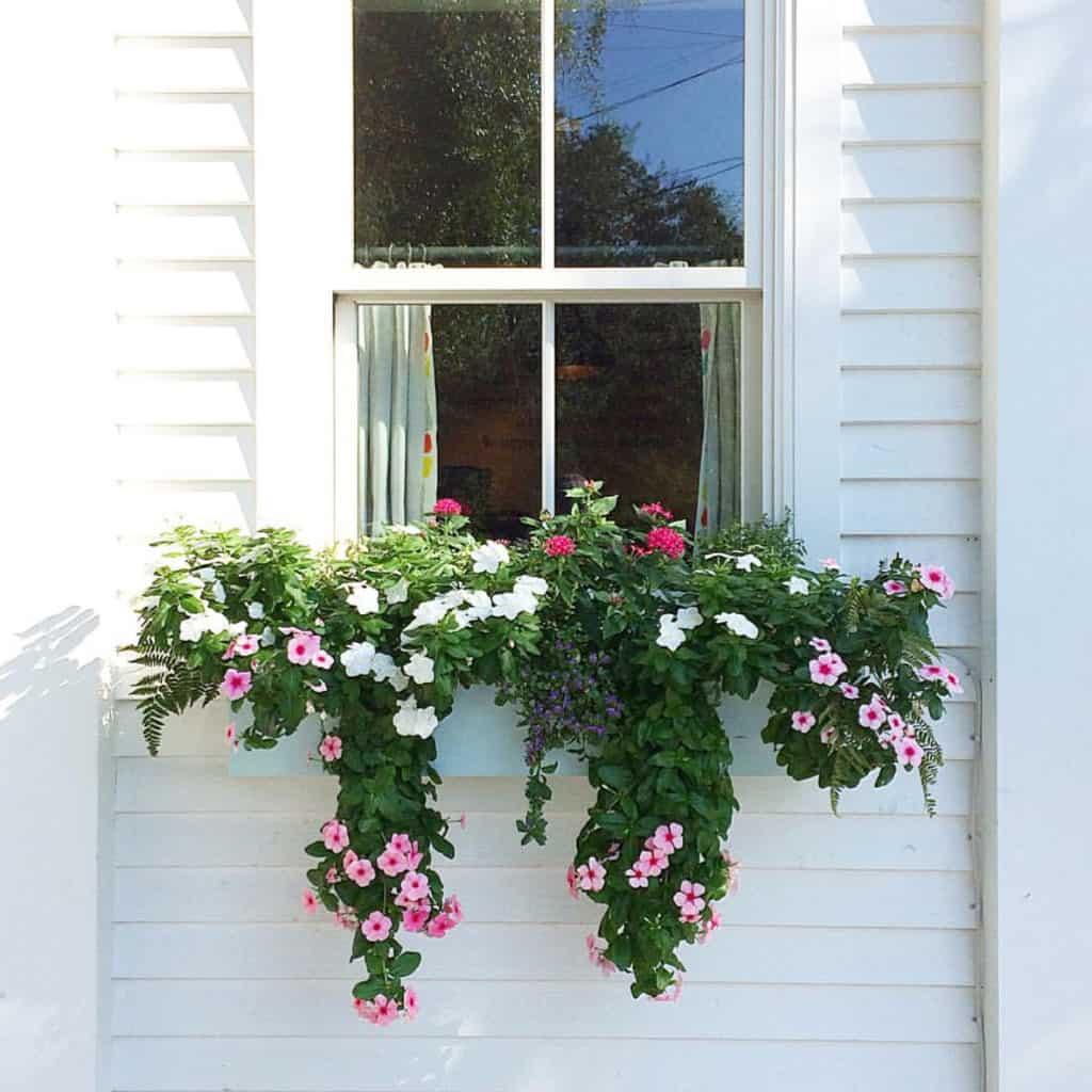 Charleston Window Box White on White