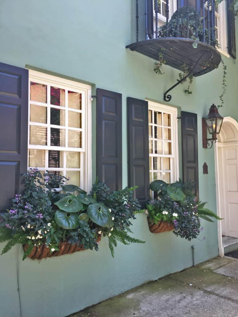 Charleston Window Box Green Building Black Shutters