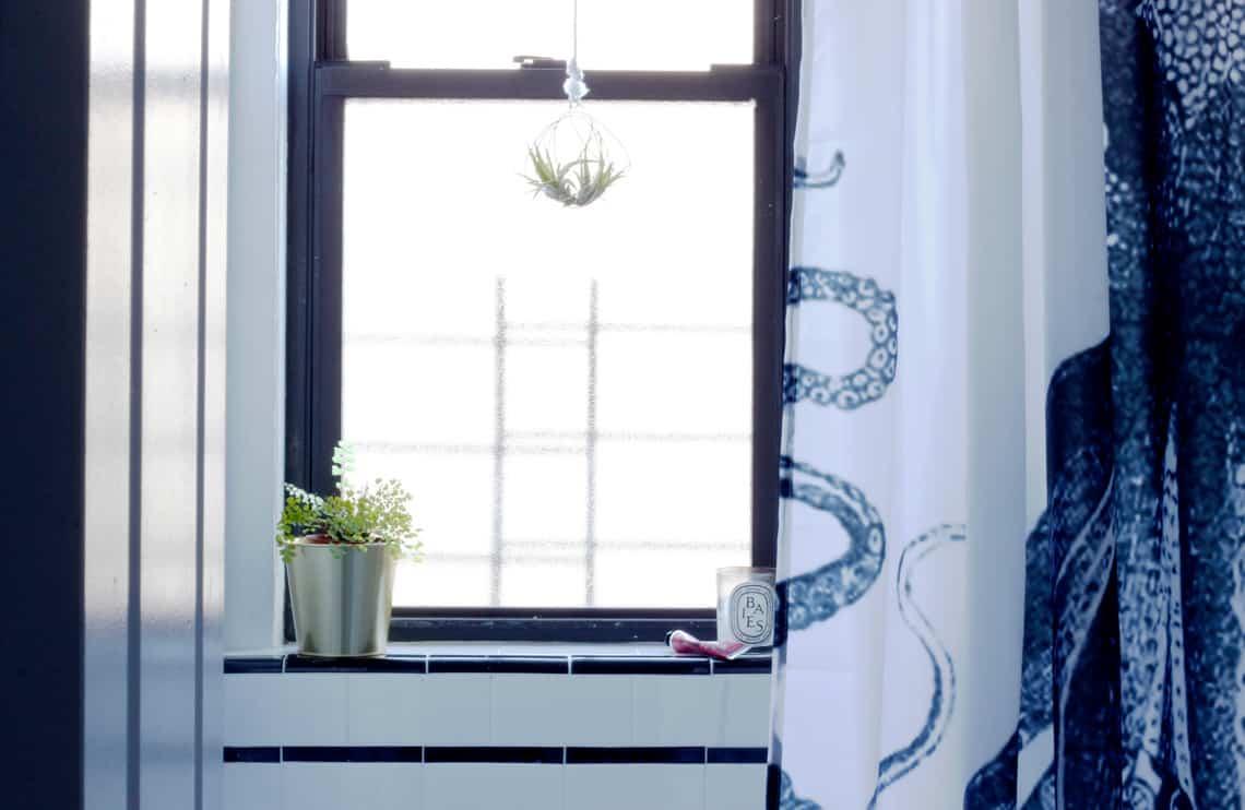 Home of the Month: Elaine's Stylish Brooklyn Studio bathroom