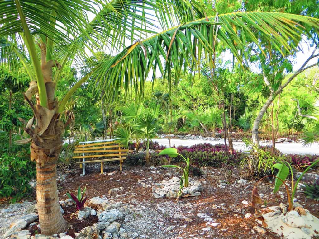Home of the Month: Beautiful Bahamian Home (For Sale) grounds