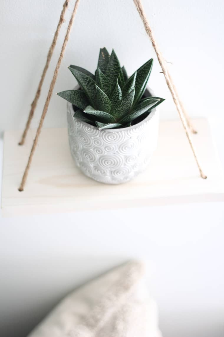 Dining Room Updates + A Refinished Table succulent