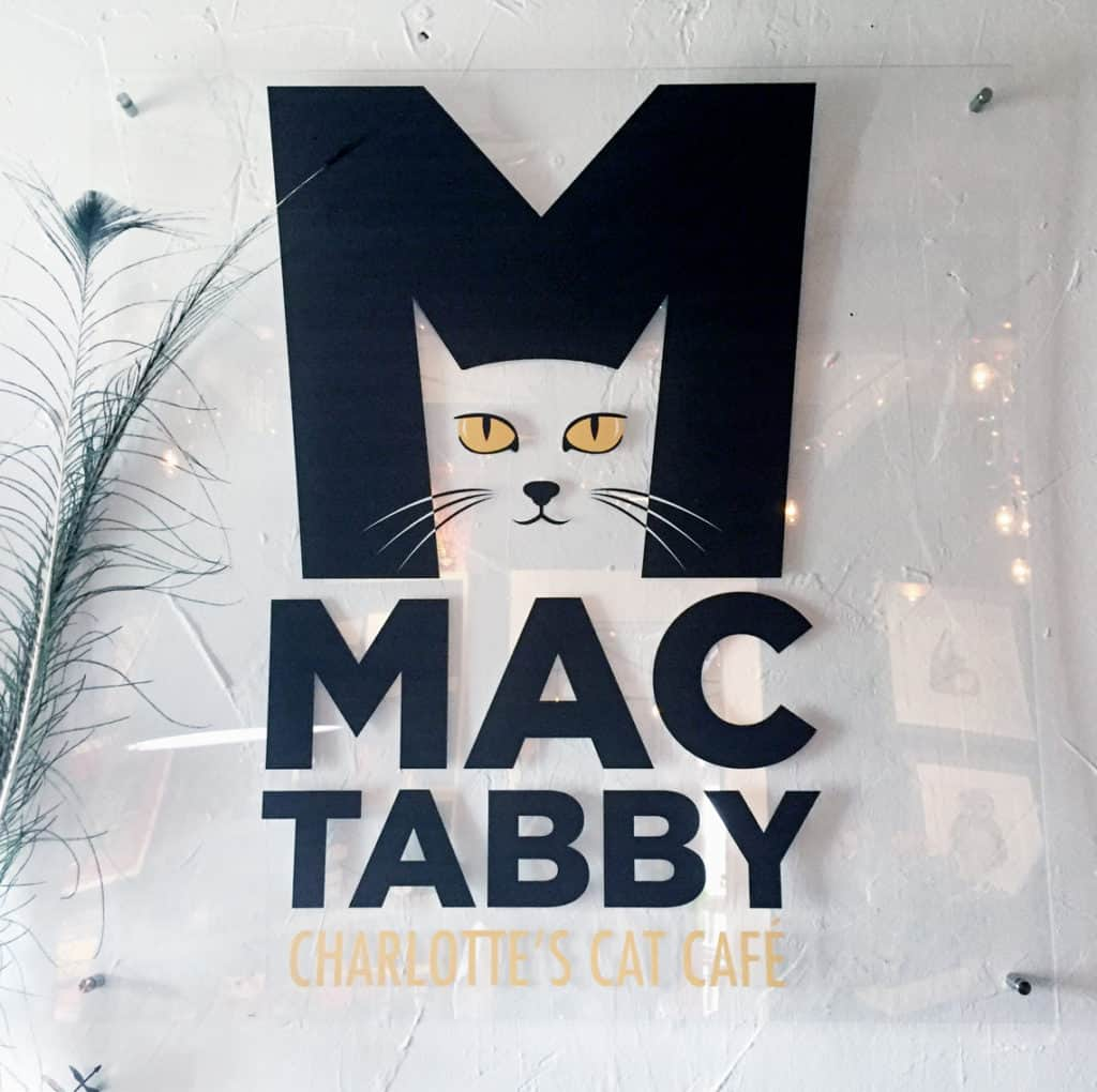 Local Spotlight: Mac Tabby Cat Cafe, Charlotte, NC sign