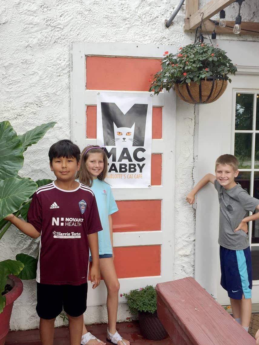 Local Spotlight: Mac Tabby Cat Cafe - Charlotte, NC door