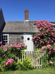 Nantucket Travel Guide: Stay, See, Eat, Do 120