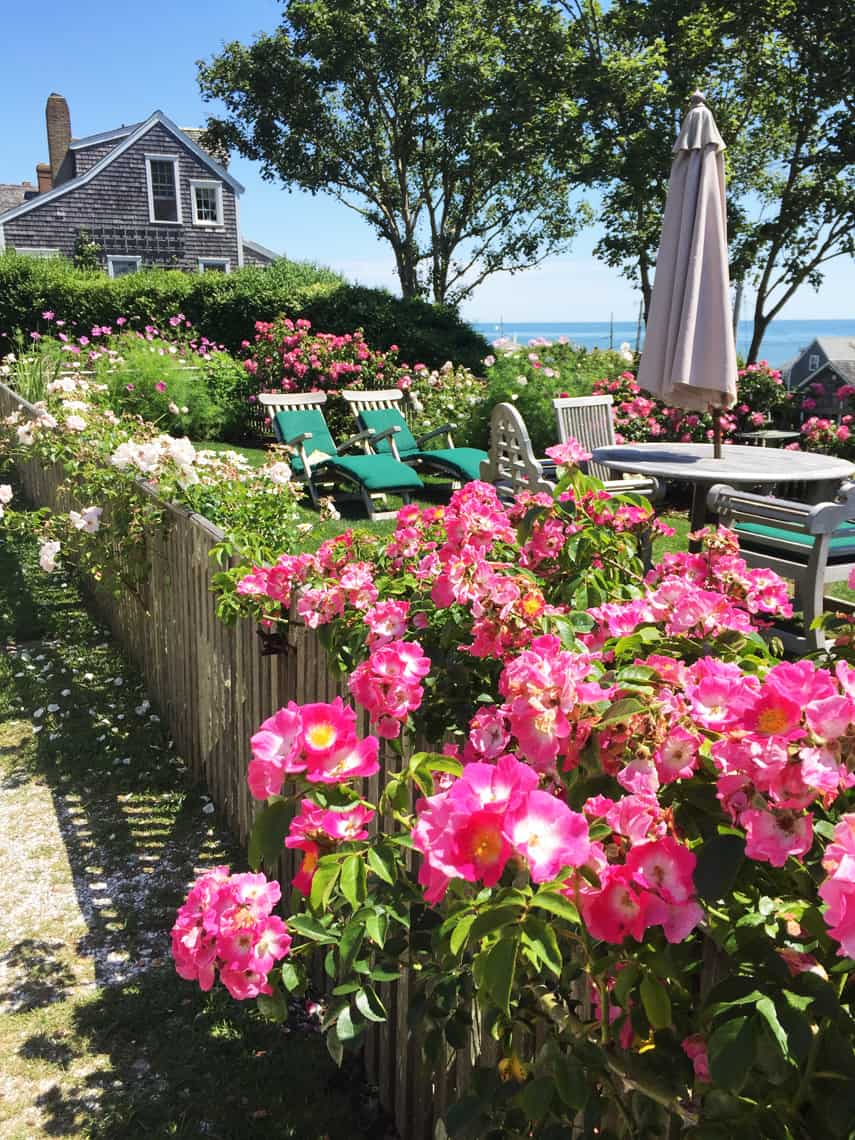 Nantucket Travel Guide: Stay, See, Eat, Do 113