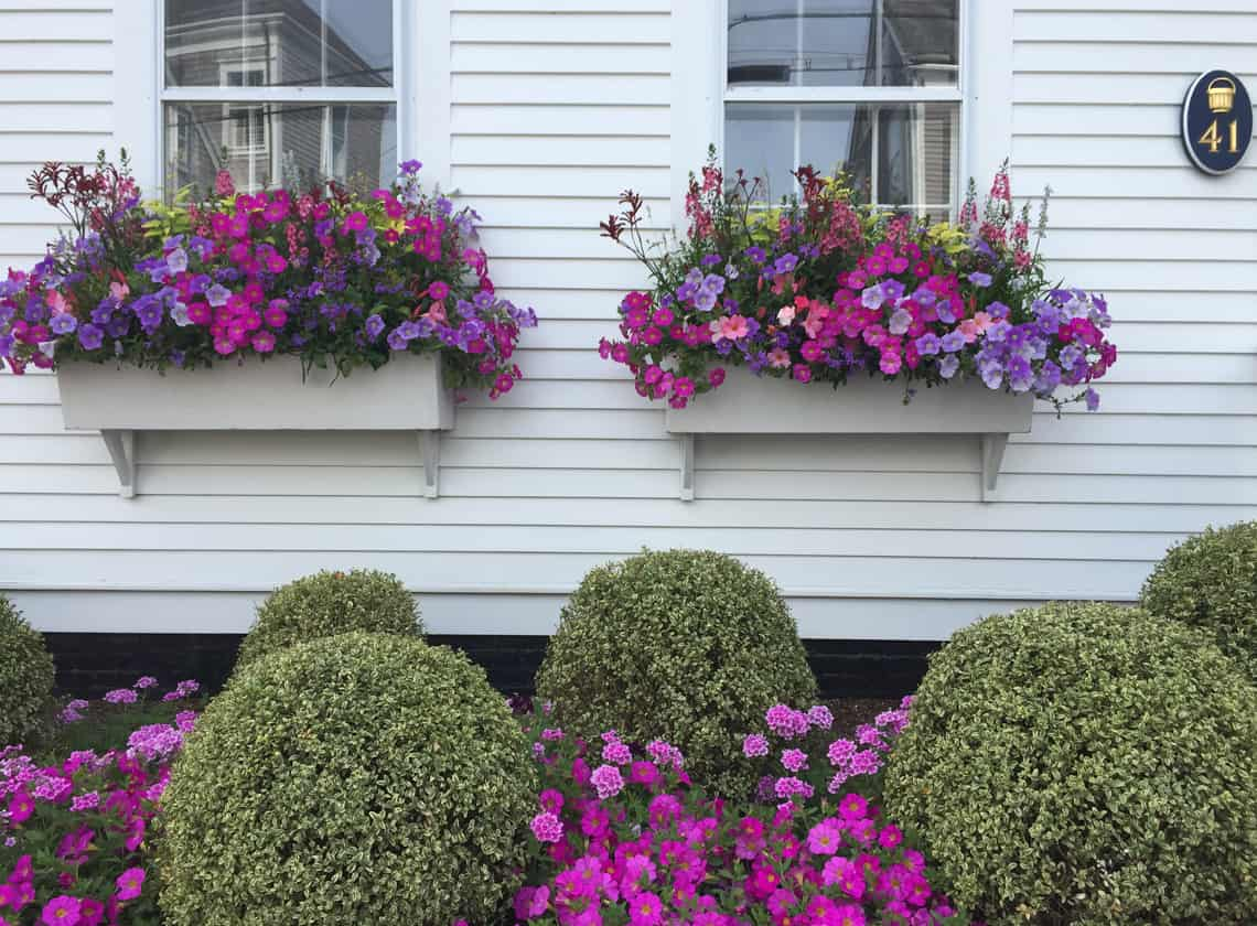 Nantucket Travel Guide: Stay, See, Eat, Do 2